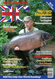 View Volume 29 Issue 174